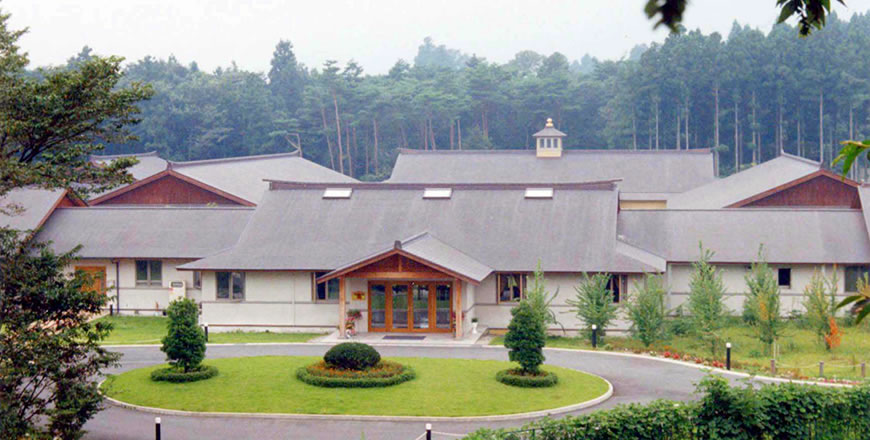 Complex of Vastu buildings in traditional Japanese style, Japan